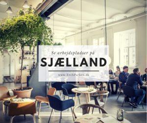 arbejdsplads på sjælland i techparken